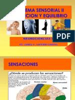 5. Sistema Sensorial II