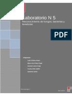 Laboratorio N 5(1)Micro