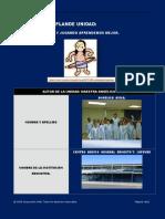 plantilla proyecto educativo plan unidad original