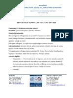 Program Cultura 2007-2013