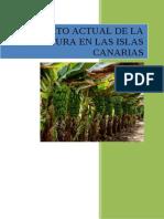 Contexto actual de la agricultura en las islas canarias.doc