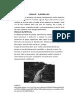 Aplicaciones de La Topografia en La Ingenieria Ambiental