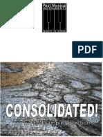 PMI Post Accordions Manual