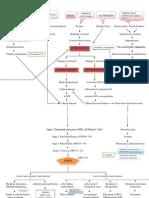 Path o Physiology 1