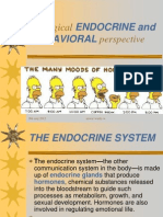 Endocrine Perspective (1)