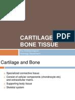 Bone DMS