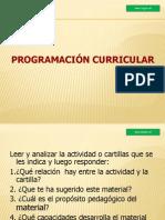 Programación Curricular Institucional