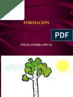 PUC - Formación 2014