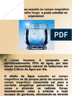 Funcao Da Agua Exposta Ao Campo Magnetico Com IVL