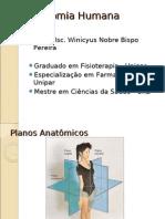 aula de planos e óssos 1