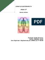 Módulo 07 - Terapia de Cura Prânica