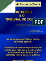 ContabilidadePública TCE C.R.C.parte2