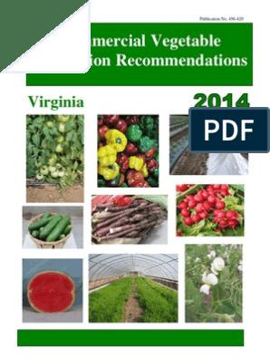 456-420-pdf | Organic Farming | Genetically Modified Organism