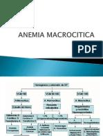 Anemia Macrocitica