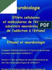 6b_neurobiologie_sfa2009