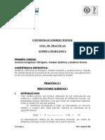 Guia Quimica Inorganic A 2009 II
