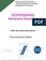 Aaula-membrana1_2014 (1)