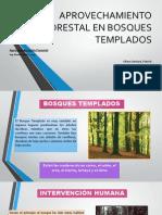 Aprovechamiento Forestal en Bosques Templados
