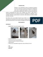 ENSAYO NORMAL PARA EL USO DEL PENETRÓMETRO DINÁMICO  DE CONO (PDC) EN APLICACIONES DE PAVIMENTOS