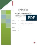 Informe N° 3_Agua