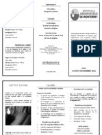 Triptico Diplomados 2014 (1)