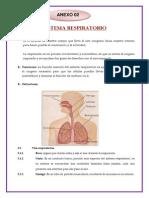 Sistema Respiratorio Anexos