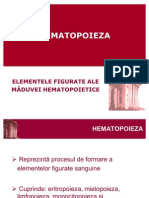 54506824-Hematopoieza-2009-new-1