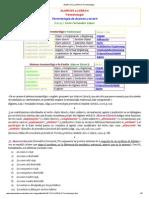 Alarcos Llorach Terminología