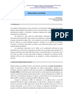 ProtCI Cateter HUSD 07