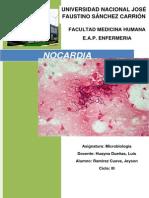 Nocardia Es Un Género de Bacterias Gram