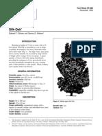 Gilman & Watson 1993.pdf