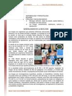 Generalidades Sobre Micologia Lectura
