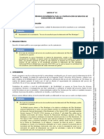 Instructivo Sobre Formulacin de Tdr - Consultoria