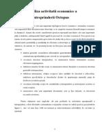 Analiza Activitatii Economice a Intreprinderii Octopus