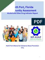 north port indicator report-final