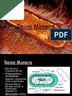 Bacterias_Doenças