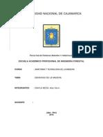 Informe Densidad de La Madera