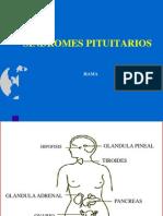 Sd Pituitarios