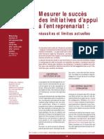 Mesurer Le Succes Des Initiatives Dappui a Lentreprenariat