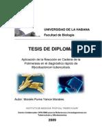 TESIS Reaccion Cadena Polimerasa Diagnostico Tuberculosis