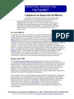 El FMI y Los Objetivos de Desarrollo Del Milenio