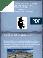 Percepcion, Distancia y Profundidad