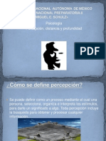 Percepcion, Distancia y Profundidad