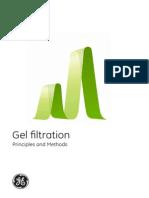 Gel de Filtracion