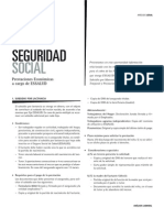 Analisis Legal de Prestaciones Economicas Essalud