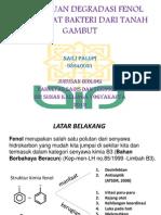kemampuan degradasi fenol oleh isolat bakteri dari tanah-121204095827-phpapp02