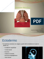 1_Sistema nervioso.pptx