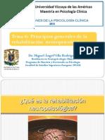 2013 7 Principios de La Rehabilitacion Npsic