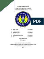 Laporan Praktikum Fotosintesis Percobaan Sachs.docx