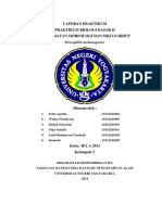 Laporan Praktikum Drosophila melanogaster.docx